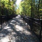 Still pretty green with splashes of color on the Colchester/Burlington bike path. http://t.co/FOv6KFLhvh
