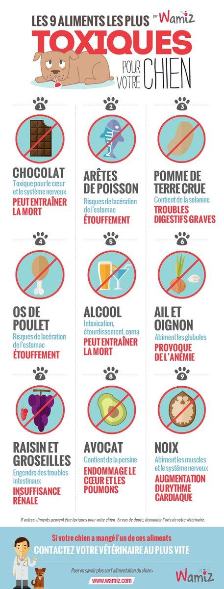 Comment éviter de tuer votre chien ?  Bannissez ces 9 aliments les plus toxiques pour les chiens : https://t.co/ZQJYEPxVT9