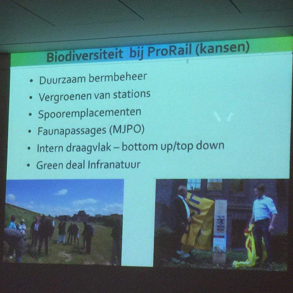 Kansen genoemd  door @vlinderNL (Albert Vl.) voor de natuurbeheerder nr2 van NL! =@Prorail; nr1=@Rijkswaterstaat https://t.co/Q9zPQkwKka