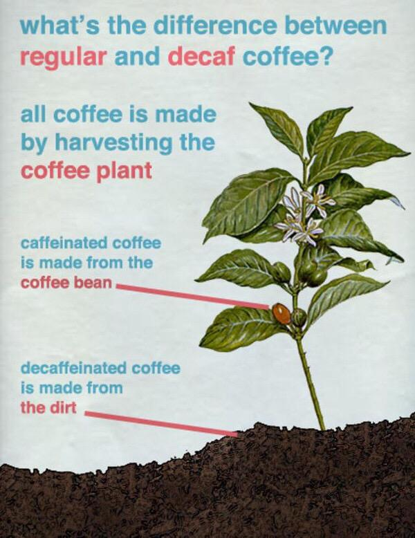 How decaf coffee is made http://t.co/VvE3D3UyjP
