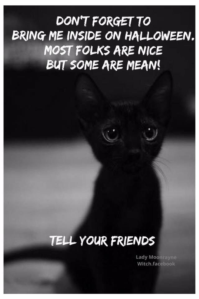 Animal abuse towards black cats  goes up significantly in October! Keep these babies inside and safe this month! http://t.co/XiEmCJNu09