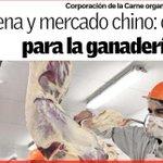 23 de octubre en #valdiviacl Seminario Carne: #Chile y mercado chino. + info en @camposureno http://t.co/tpfZKYlzR0 http://t.co/Gl6FLmT5vy