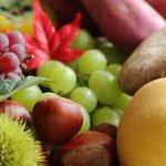 【食欲の秋】食べても太らない秋の3大味覚…サーモン、サンマ、きのこ http://t.co/5wAoDs1ruJ 脂の乗ったサンマは身体に脂肪として付きにくい脂肪酸を含んでいるので、ダイエット中でも気にせず食べてOK! http://t.co/g8kwevva7p