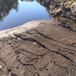 #Monago: No han movido un dedo para la paralización de las cenizas del incendio en Sierra de Gata #AgendaDelCambiazo http://t.co/lNDXK3bRnB
