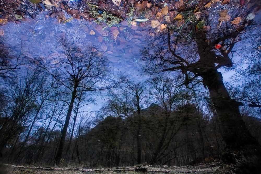 ここにも天地が http://t.co/ASXlL3JzJg