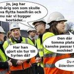 """Ingrid Lomfors 2015-10-12: """"Det finns ingen inhemsk svensk kultur"""" https://t.co/k2wBOnK5ge #svpol http://t.co/Qke7B1faZI"""