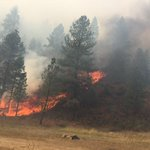 Walker Fire continues to burn away from homes, Idaho 21. http://t.co/IEpYQby0B6 http://t.co/Rau9QR9Lu7