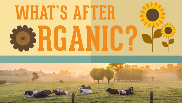 What's after #organic? The #biodynamic movement: http://t.co/fLM4fcxqIH #sustainable #agriculture @DemeterUSA http://t.co/JvJfB5xvKG