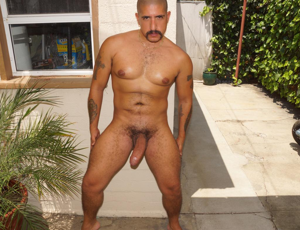 #rawmachoFucker #exhibitionistpig #MachoFucker #DaddyBigDick #BarebackPig #SebastianRio #biguncutcock #HairyFucker http://t.co/0b84dD9D7N