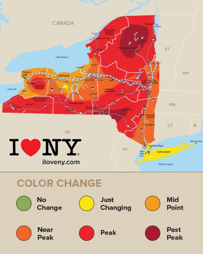 @I_LOVE_NY's weekly foliage report is out -- wknd colors expected to be best yet http://t.co/klv0VaKZQB #NYLovesFall http://t.co/poeK12EuRB