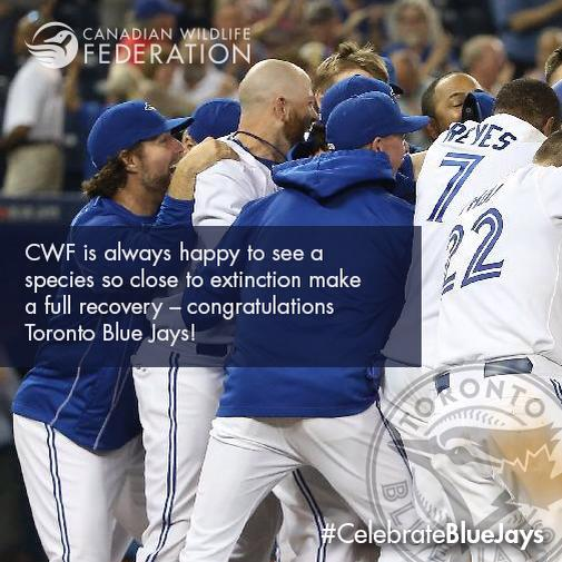 #CelebrateBlueJays #comeTogether http://t.co/BFLpqhgARm