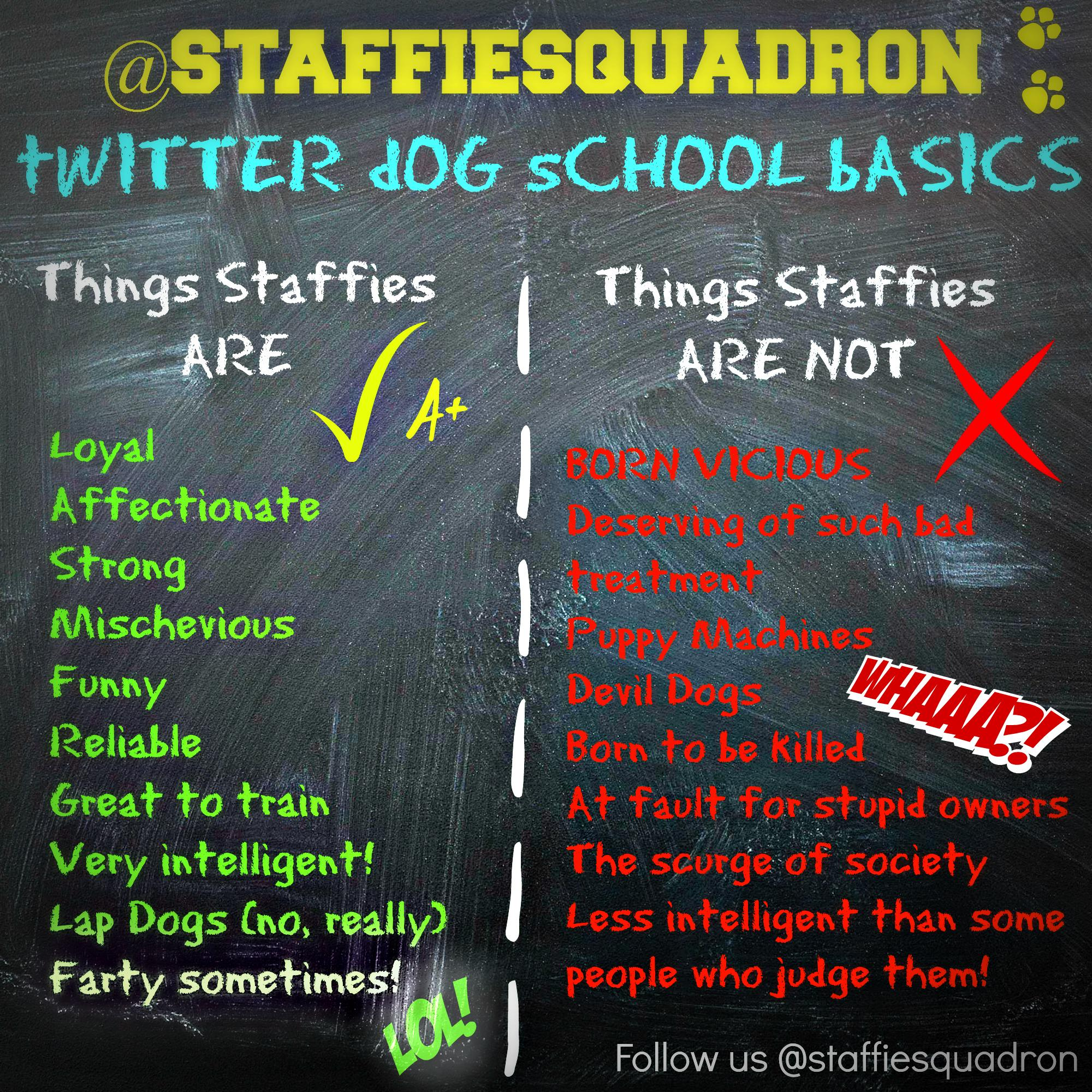 PLS RT: The BASIC GUIDE TO STAFFIES ;) #EndBSL #Anipal #Staffies #dogs #Staffy http://t.co/L8MUuZSBDI