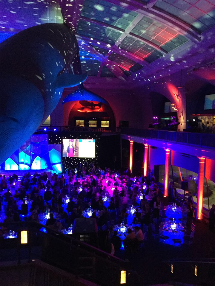 Such a great night attending @EMDGroup American Museum of Natural History event w@amy2pt0 @AMNH #questiontogether https://t.co/u3K1Xn3KHe