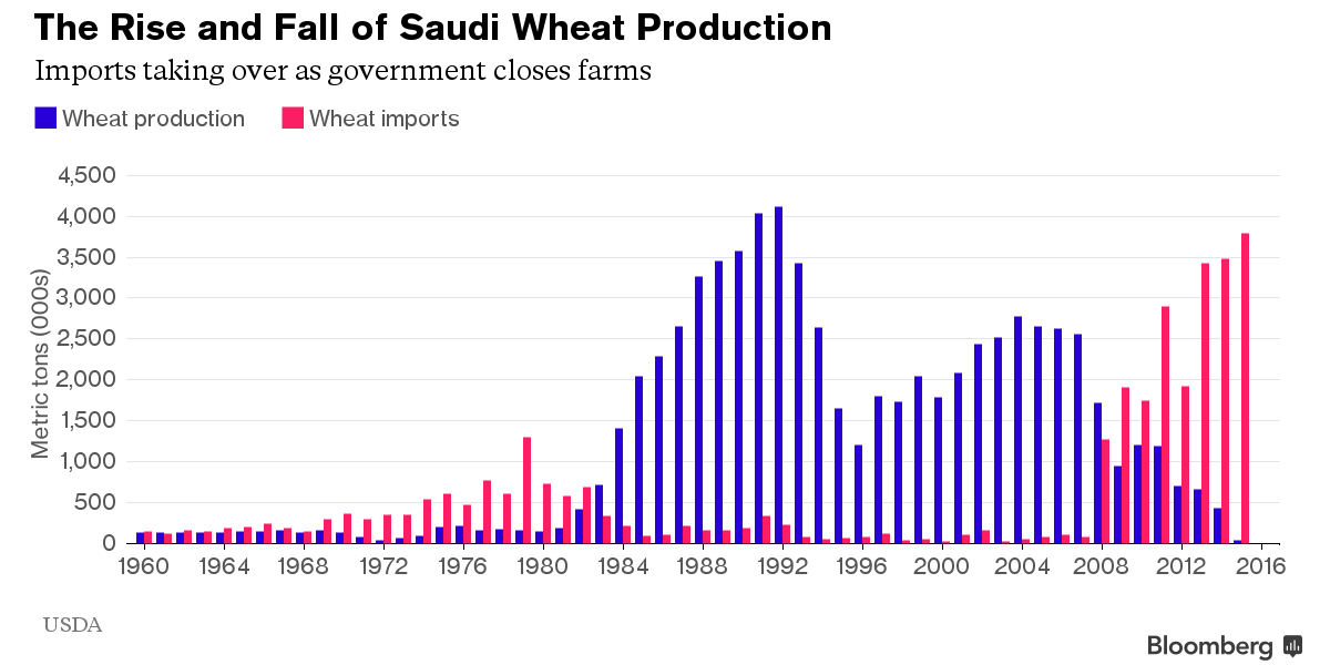 Saudi Wheat Production