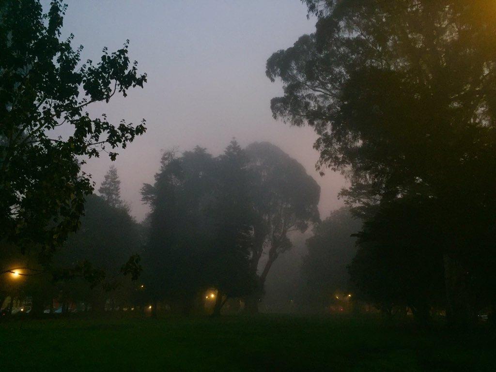 A cold and foggy San Francisco dawn https://t.co/uqDadO9qln