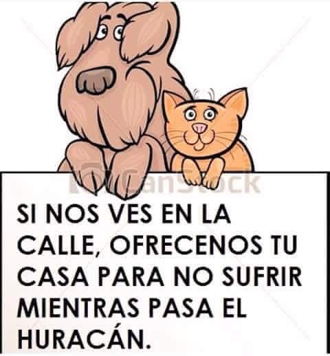 También es de héroes ver por los animalitos...! #HuracanPatricia #FuerzaJaliscoNayaritYColima #ProtecciónAnimal https://t.co/1jowiLZLMg