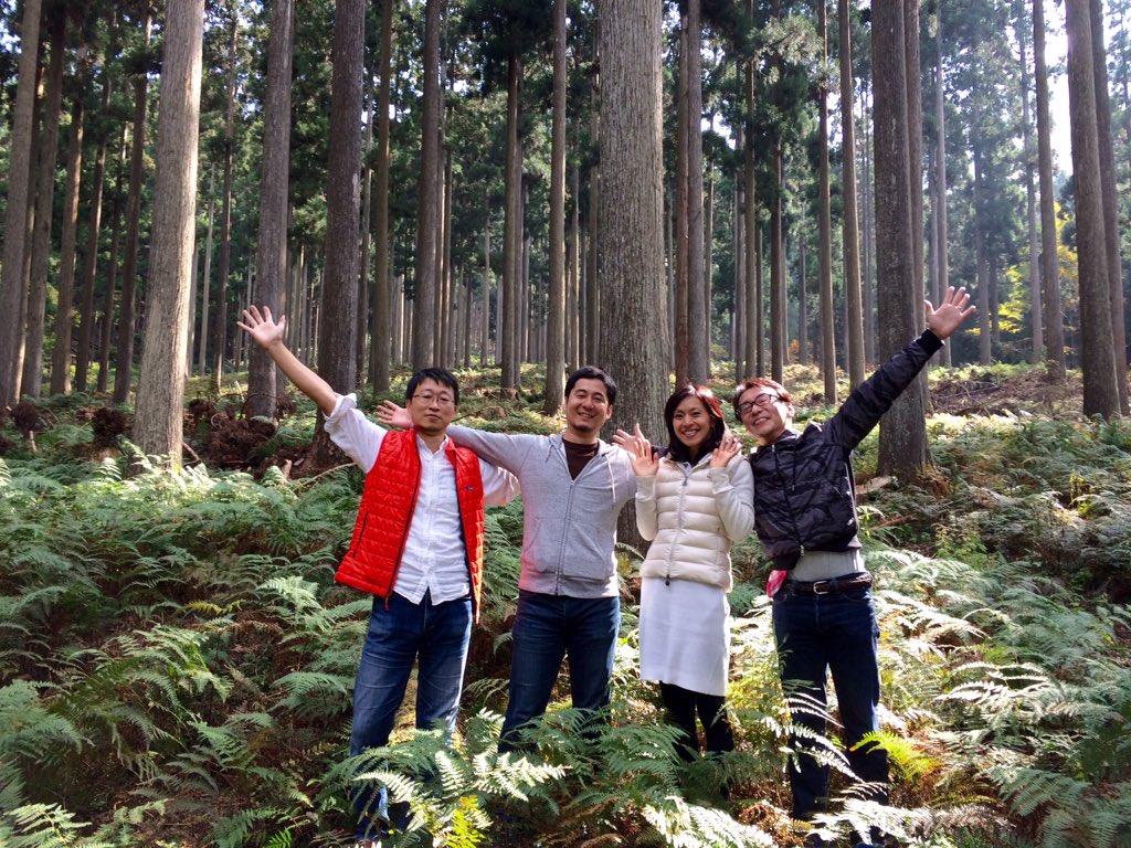 西粟倉村  『百年の森構想』の一部分。光が美しく土はフカフカです。夏も素晴らしいけど、秋も素晴らしいかったー! https://t.co/kOHjX7iuLp