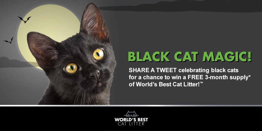 This Halloween, help spread the word about what makes black #cats so special. #blackcatmagic https://t.co/ZkBptS2Q5Q https://t.co/yEm6qYZUKW