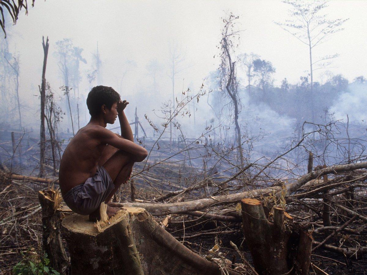 """Sous les fumées, l'#Indonésie fait face à l'une des pires """"crises incendies"""" de son histoire https://t.co/kX9Xb0hHqP https://t.co/2LQqnsvKhb"""