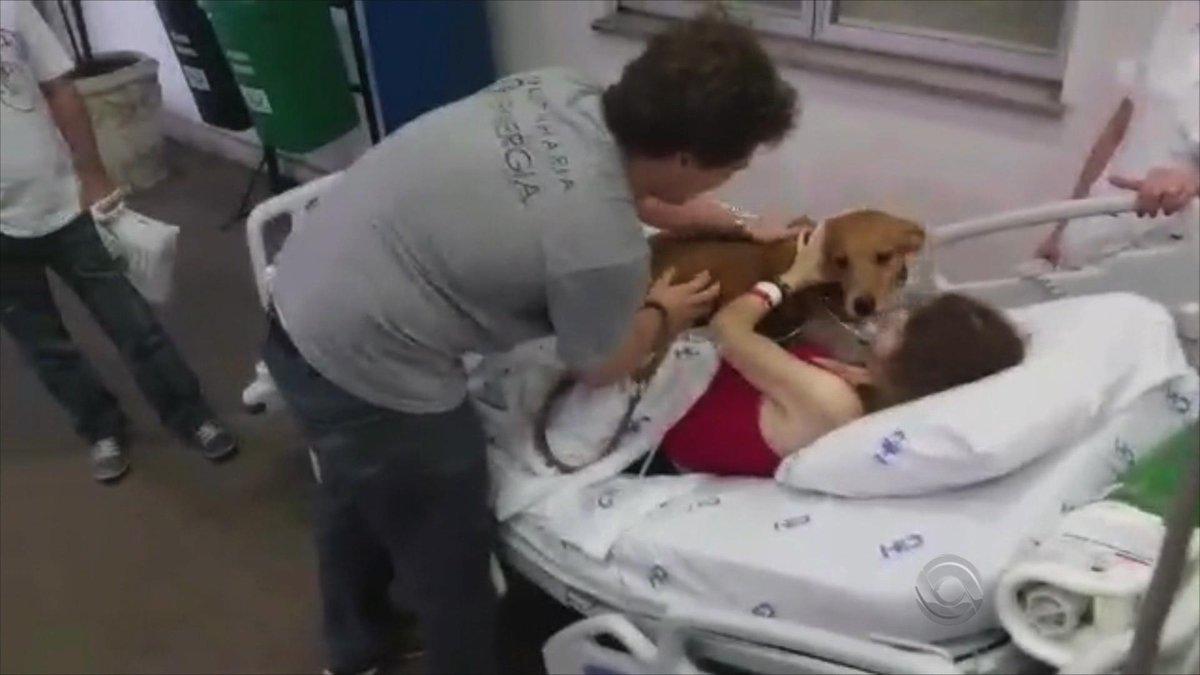 Daqui a pouco no #JornalDoAlmoço, o reencontro emocionante de uma paciente com câncer e seu cachorro de estimação https://t.co/4SYDlGBcnD