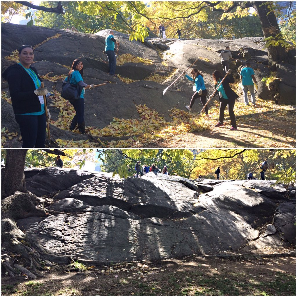 The before & after! Keeping @CentralParkNYC clean and as beautiful as ever https://t.co/3tIZtvk6sc