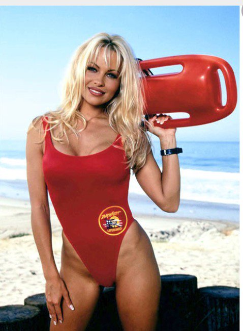 All proceeds benefit The Pamela Anderson Foundation https://t.co/apy6hGbpbW https://t.co/XZrs0QncBi