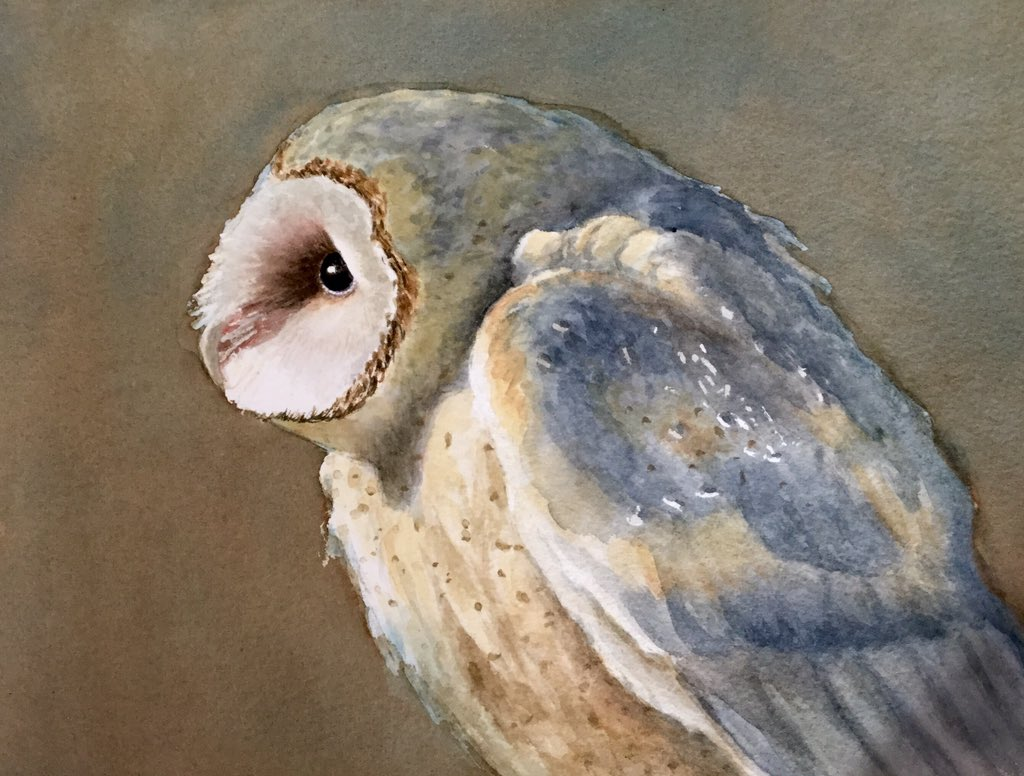 Here is where Barn #Owl #painting stands today. Just a tweak to the background and it will be done. https://t.co/AsXp6mZ8XD
