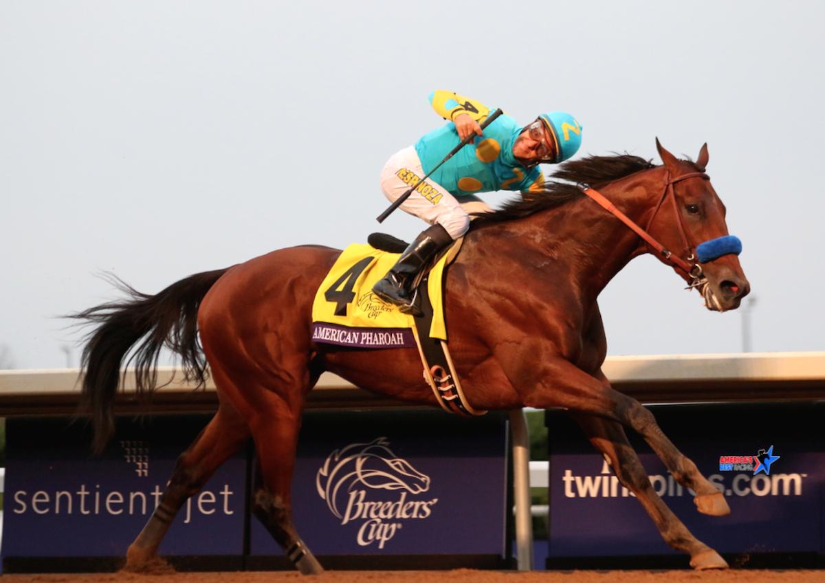That feeling when you've just won #horseracing's Grand Slam....   #AmericanPharoah https://t.co/WSaiPmBjNV