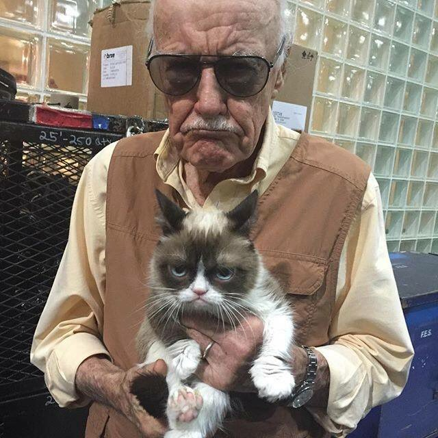 This photo of Stan Lee and Grumpy Cat has made my day. ❤️ https://t.co/1U9lA5W1jY