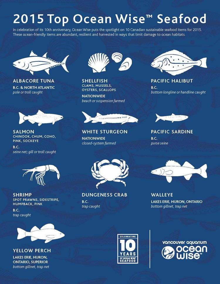 It's @ocean_wise month. RT if you're a proud #OceanWise ambassador! https://t.co/iHDn4guCZv https://t.co/SBU9ZyPSwm