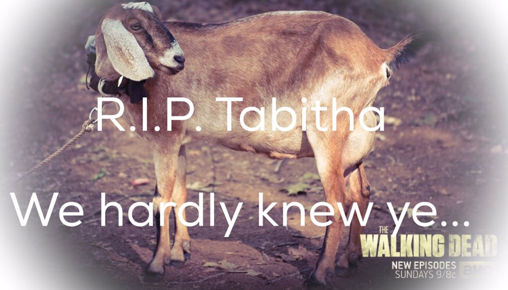 We will never forget you... #TWD #DeyWalking #TalkingDead #Tabitha #Pouroutsomegoatcheese https://t.co/8mheE7mKQE