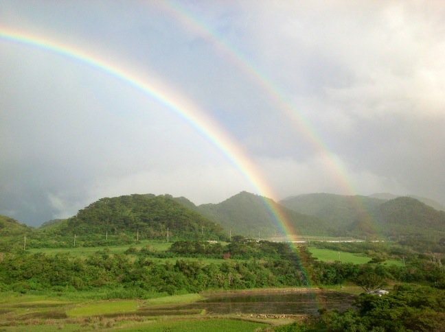 虹が生えているところを、初めて見た。 https://t.co/kzU0M2JWnN