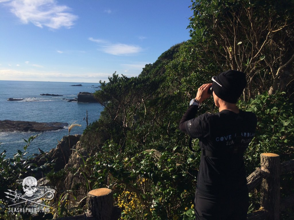 RT @CoveGuardians: 0900am: The hunt continues here in Taiji. #tweet4taiji https://t.co/aVdplHNRT6