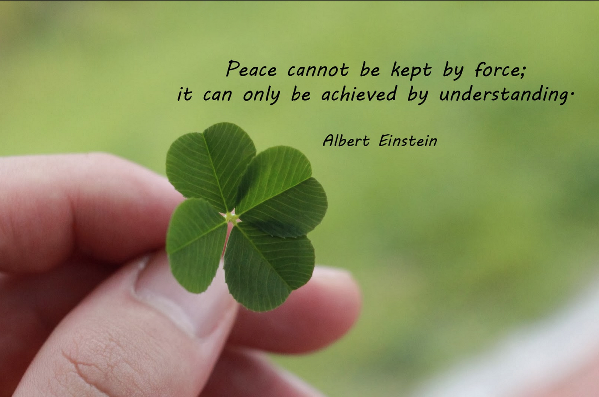 This says it all! #peace  Have a good nice week https://t.co/qnYyHj48KJ