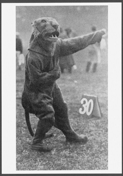 On this day in 1909, the panther was officially adopted as the University of Pittsburgh mascot. https://t.co/gGnd5a7J5t