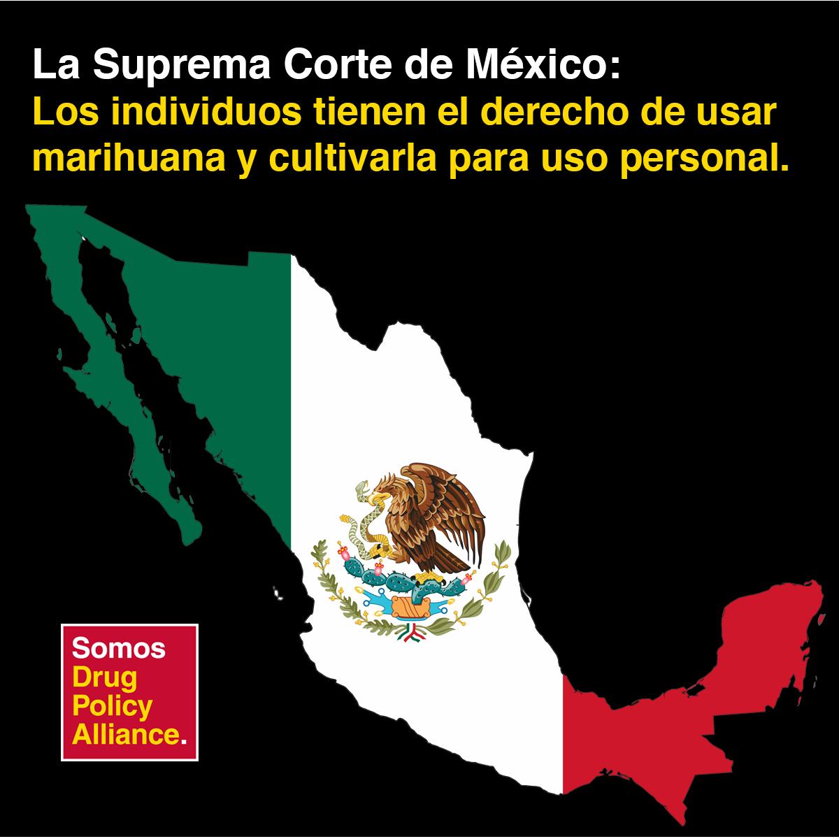 Los individuos tienen derecho de usar #marihuana y cultivarla para uso personal. Lo dice la Suprema Corte de México https://t.co/0HmwpaMhRi