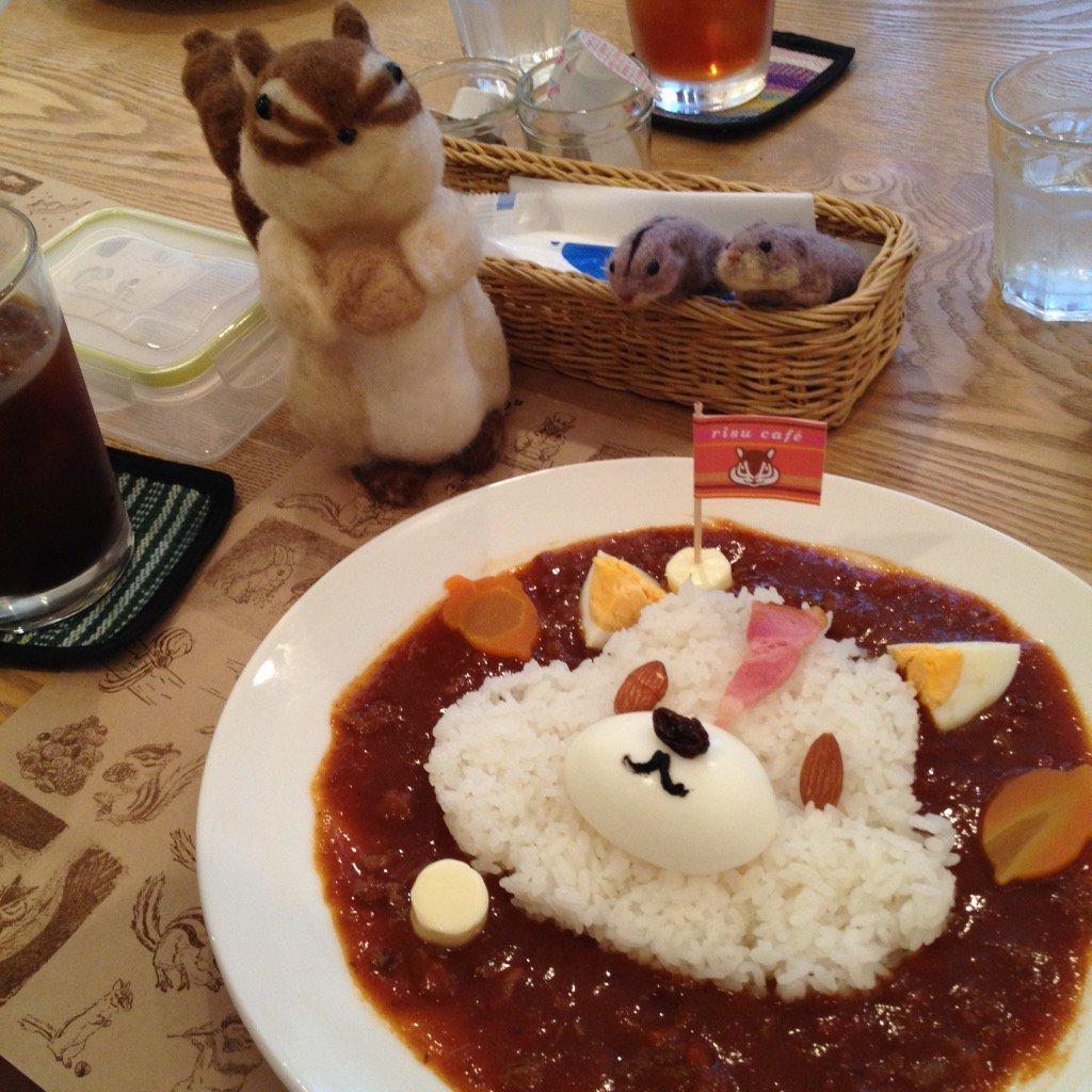 #りすカフェ がはじまりました。リスはもちろん可愛いものや動物好きな方にもオススメです #ぽたかふぇ #高円寺 https://t.co/WlflPmY6CQ