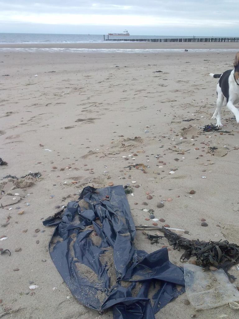 Toeristen weg, strand vervuild? Jammer hoor. #Vlissingen  #zwerfie #statiegeldactie https://t.co/r8pnvrJUPc