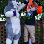 Image of fursuitfriday from Twitter