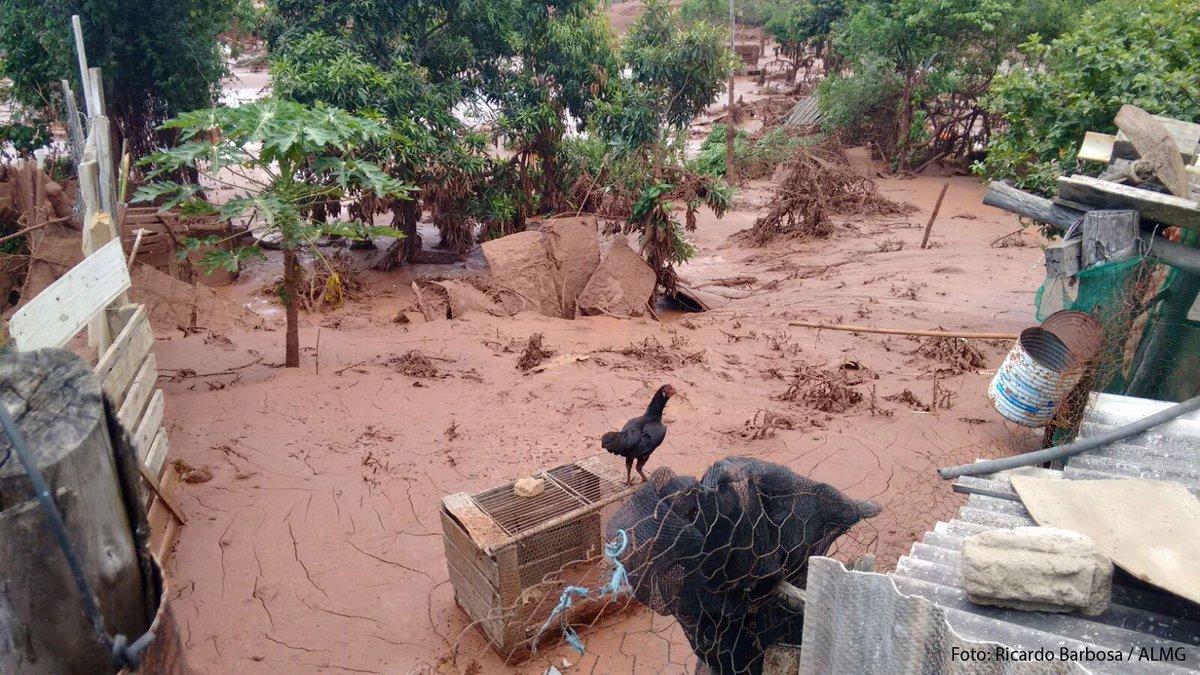 Local atingido por rompimento de #Barragem em #Mariana. Com. de Meio Ambiente reuniu-se c/ #Samarco e @governomg https://t.co/Qs64mMZDn6