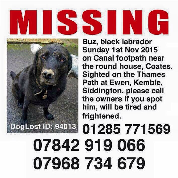 #cirencester #coates #siddington #ewen @CirenTownFC please share for Buz. Maybe print his poster, sightings in area https://t.co/0ckUzgSHoI