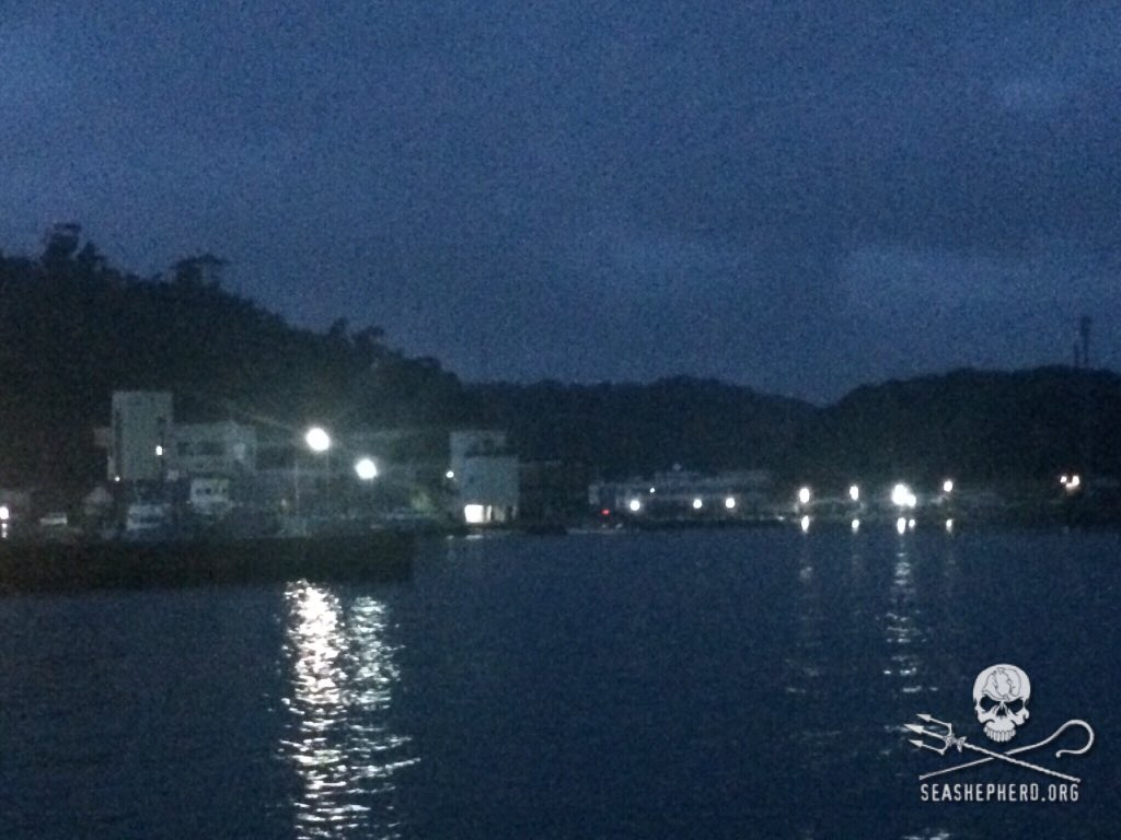 RT @CoveGuardians: 0600am: Storms kept the boats in the harbor.  BLUE COVE DAY! #tweet4taiji https://t.co/LAsKWVFDmq