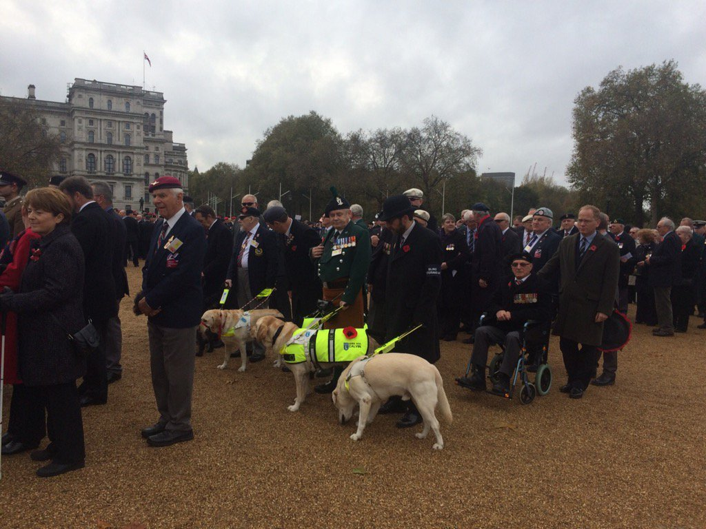 Our #veterans and their guide dogs getting ready for the parade #RemembranceSunday https://t.co/GBRDGk5TtI