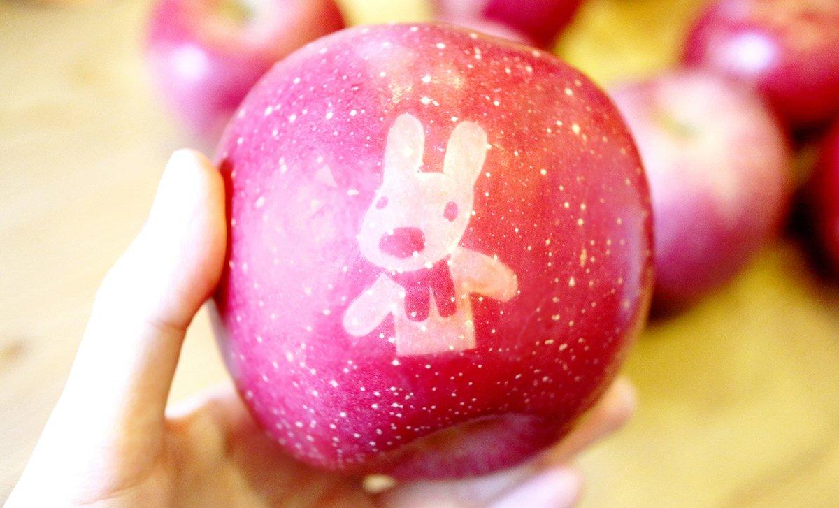 長野からとびきりキュートなりんごが届きました…\(^o^)/ https://t.co/rumZhx5Asf