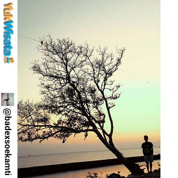 "Repost From INSTAGRAM kami @Yuk_Wisata : ""Lokasi: paling utara dari pantai Bondo, Ds. Bondo, kec. Bangsri, Jepara."" https://t.co/bHAGZgduWs"