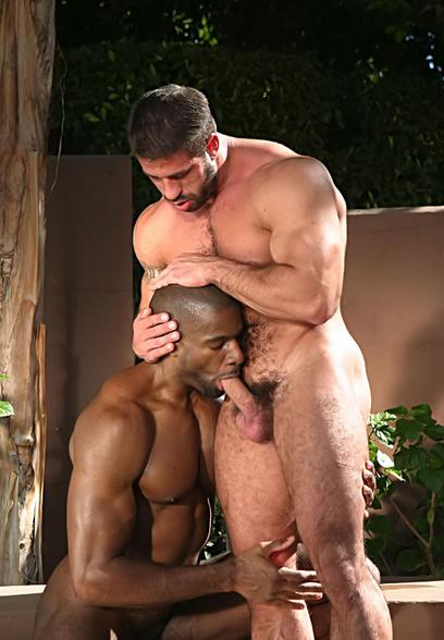 Гей порно фото мускулистых геев
