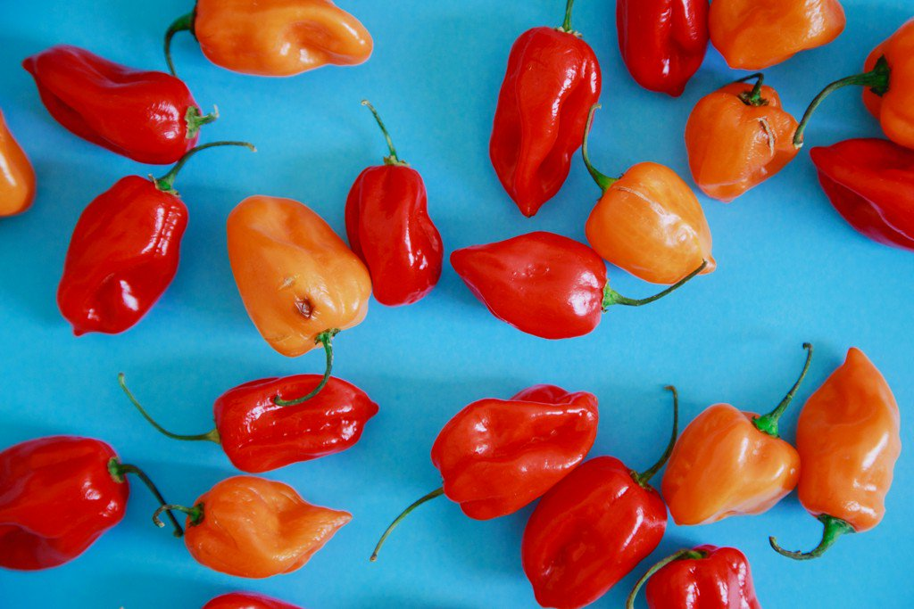 Study: People Who Eat Spicy Foods Are More Likely to Live Longer https://t.co/3FQ0JqZqAZ https://t.co/U8SDdvRWpN