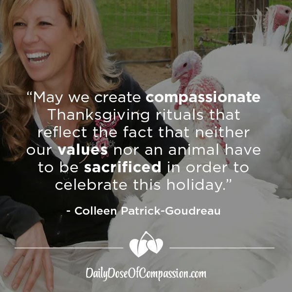 """May we create compassionate #Thanksgiving rituals that sacrifice neither our values nor an animal."" #vegan #harvest https://t.co/DO4SFTxyVF"