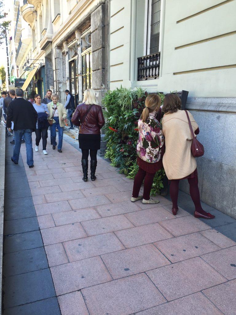 En la calle Velázquez los peatones se interesan https://t.co/3kos1Lng5B
