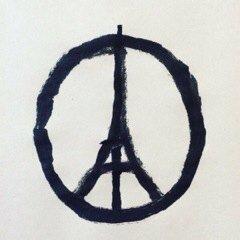 Todo nuestro apoyo y afecto al pueblo francés.  #París https://t.co/o92GGy6Xxr